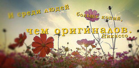 Удивительные и красивые фразы про жизнь - читать бесплатно 2