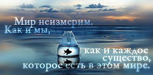 Красивые картинки с цитатами о жизни - читать бесплатно 3