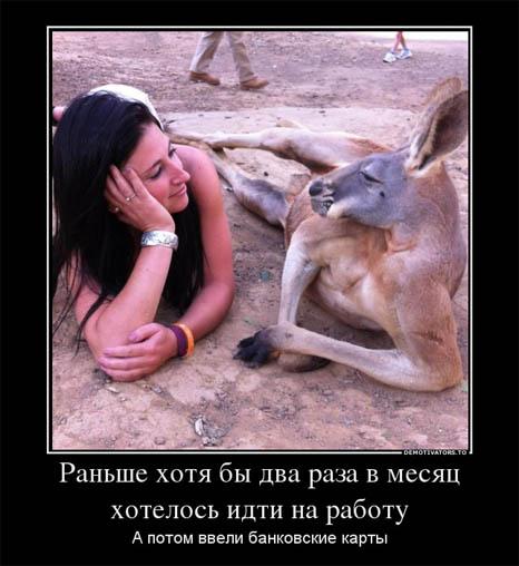 Веселые и смешные демотиваторы про животных - смотреть онлайн 8