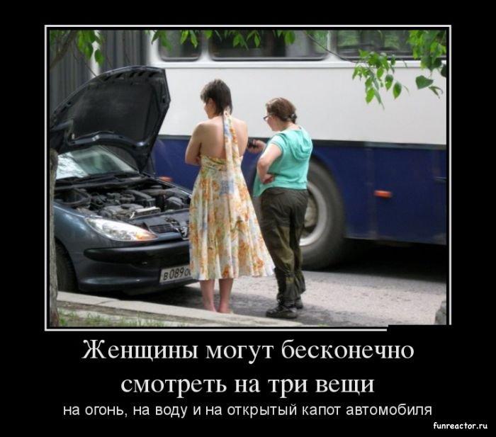 Женщина за рулем фото - веселые, забавные, смешные 5
