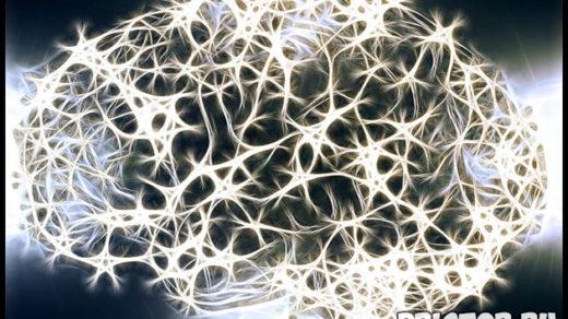 Интересные факты о мозге человека - 20 невероятных фактов 3