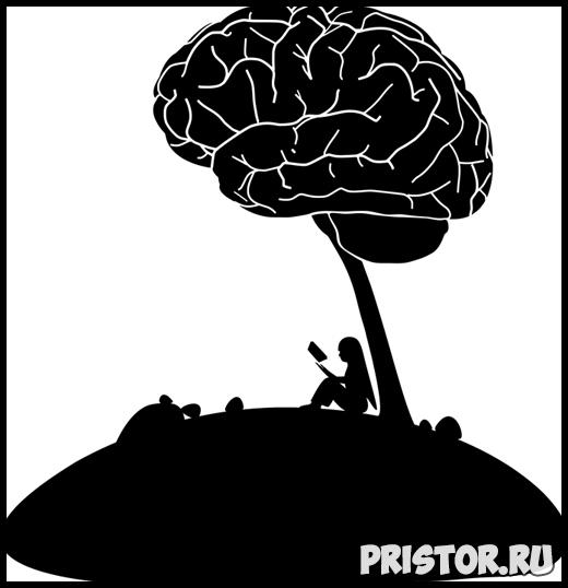 Как предотвратить слабоумие - основные советы от ученых 2