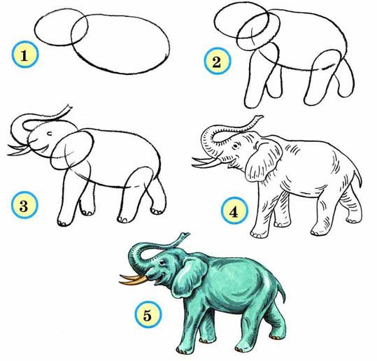 Как рисовать животных поэтапно карандашом для начинающих 2