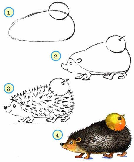 Как рисовать животных поэтапно карандашом для начинающих 4