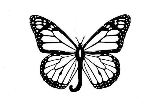 Как сделать бабочку из бумаги, бисера, проволоки своими руками 2
