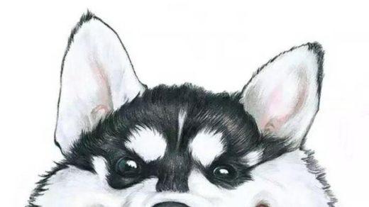 Красивые картинки на аватарку для Ватсапа - скачать бесплатно 12