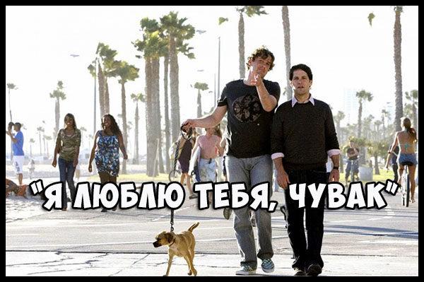 Лучшие фильмы про любовь и дружбу - список, описание, подборка 3