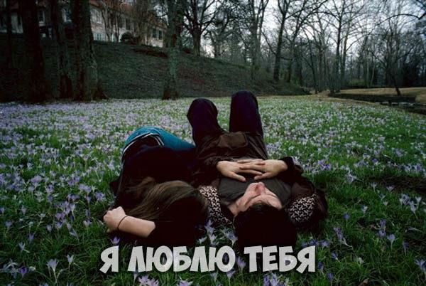 Люблю тебя картинки девушке - прикольные, красивые, интересные 1