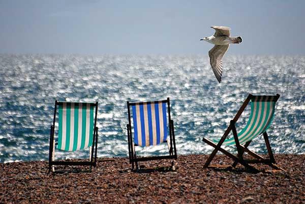 Прикольные и красивые картинки лета, животных - смотреть бесплатно 15