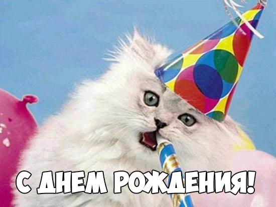 Прикольные и смешные картинки С Днем Рождения - скачать бесплатно 13