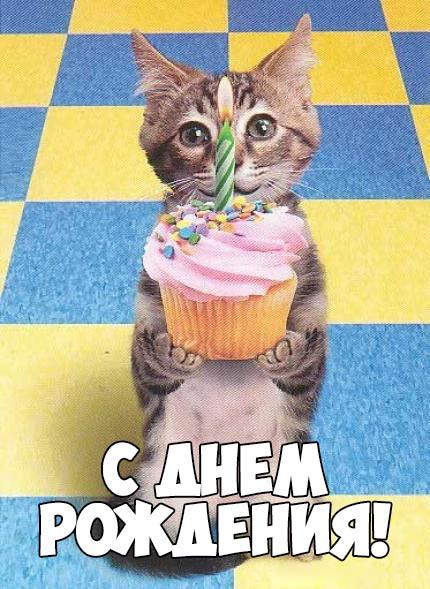 Прикольные и смешные картинки С Днем Рождения - скачать бесплатно 7
