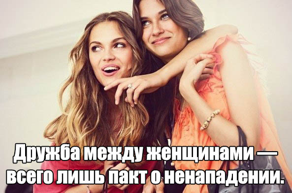 Прикольные и смешные цитаты про друзей - читать бесплатно 5