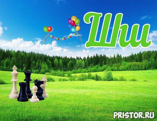 Русский алфавит для детей - картинки, фото, смотреть бесплатно Буква Ш