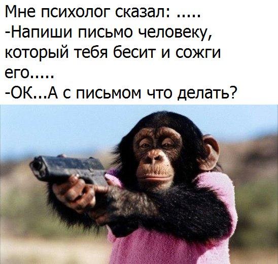 Смотреть смешные картинки про животных бесплатно, до слез 4