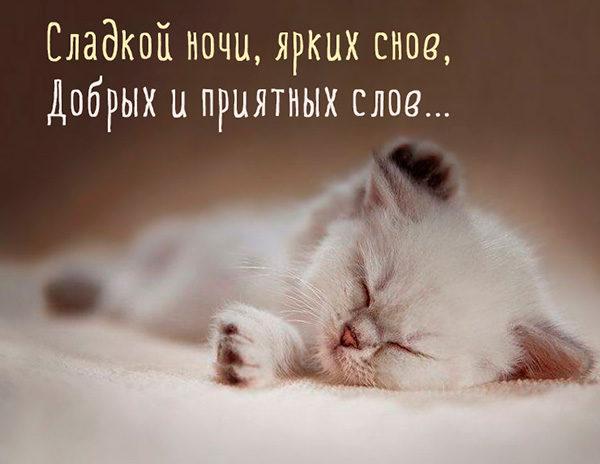 Спокойной ночи картинки с надписями - красивые, прикольные, крутые 10