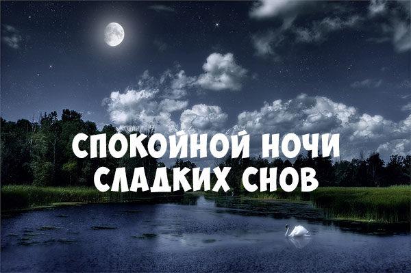 Спокойной ночи картинки с надписями - красивые, прикольные, крутые 16