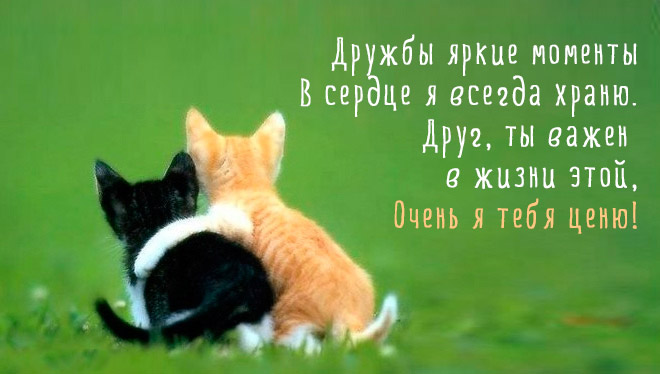 Красивые статусы о дружбе