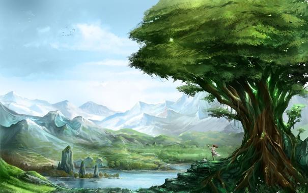 Дерево - фото, картинки, красивые, удивительные, прекрасные 14