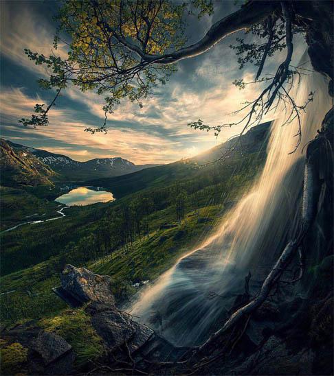 Дерево - фото, картинки, красивые, удивительные, прекрасные 3