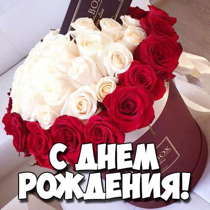 Картинки поздравления С Днем Рождения - скачать бесплатно 3