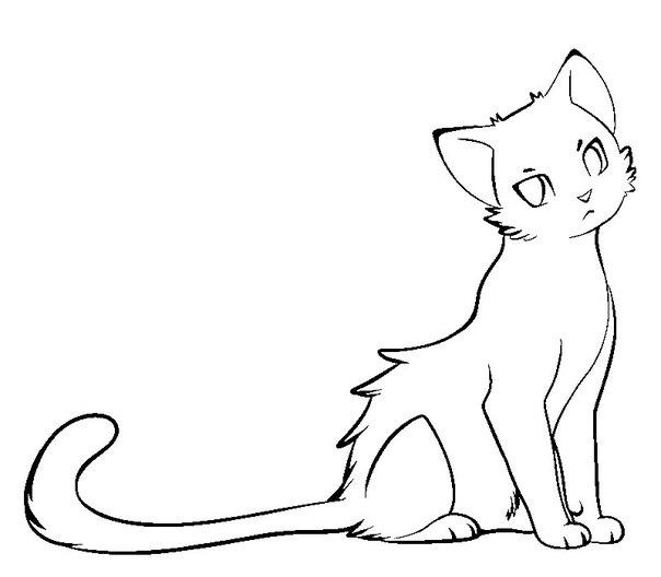 Красивые картинки котов для срисовки - легкие, простые, прикольные 11