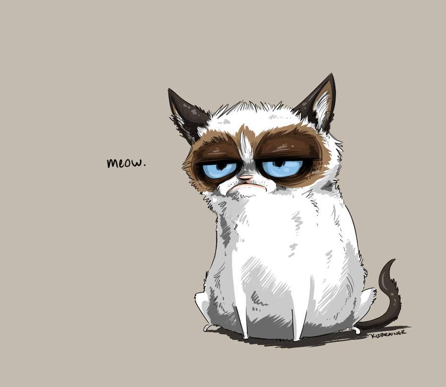 Красивые картинки котов для срисовки - легкие, простые, прикольные 13