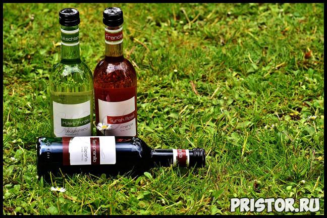 Можно ли пить алкоголь перед сдачей крови Насколько он вреден 2