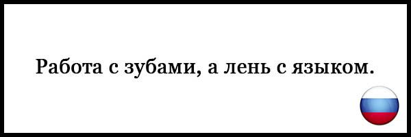 Пословицы и поговорки о русском языке - красивые, прикольные 14