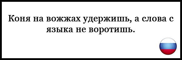 Пословицы и поговорки о русском языке - красивые, прикольные 5