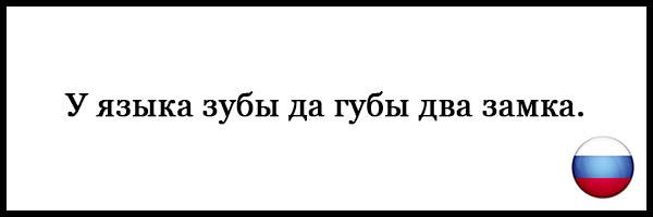 Пословицы и поговорки о русском языке - красивые, прикольные 7