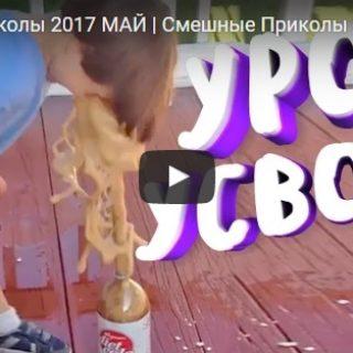 Смешные видео приколы - скачать бесплатно, новые, свежие, 2017