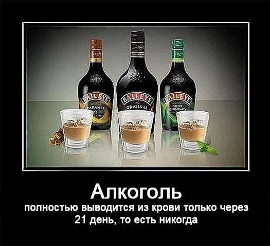 Смешные демотиваторы про алкоголь - смотреть бесплатно, 2017 1