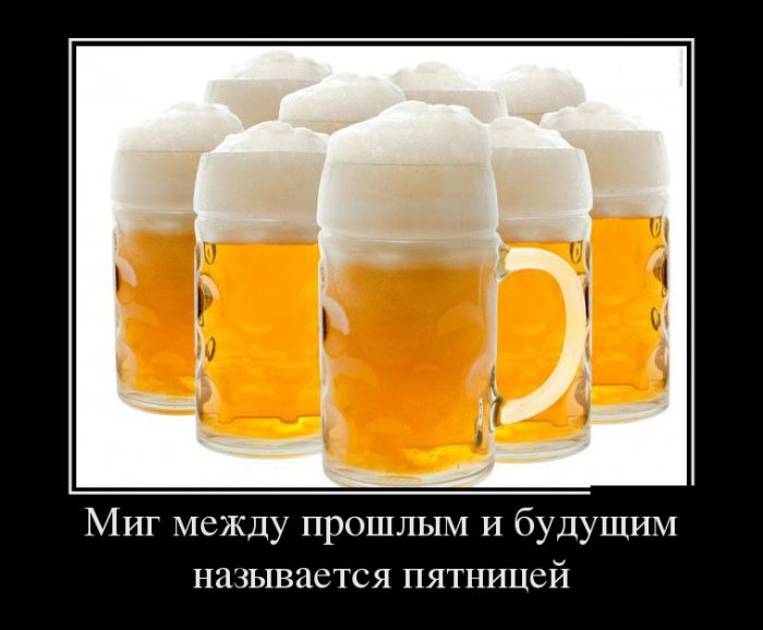 Смешные демотиваторы про алкоголь - смотреть бесплатно, 2017 3