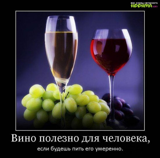 Смешные демотиваторы про алкоголь - смотреть бесплатно, 2017 4