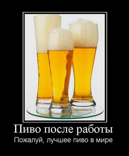 Смешные демотиваторы про алкоголь - смотреть бесплатно, 2017 5
