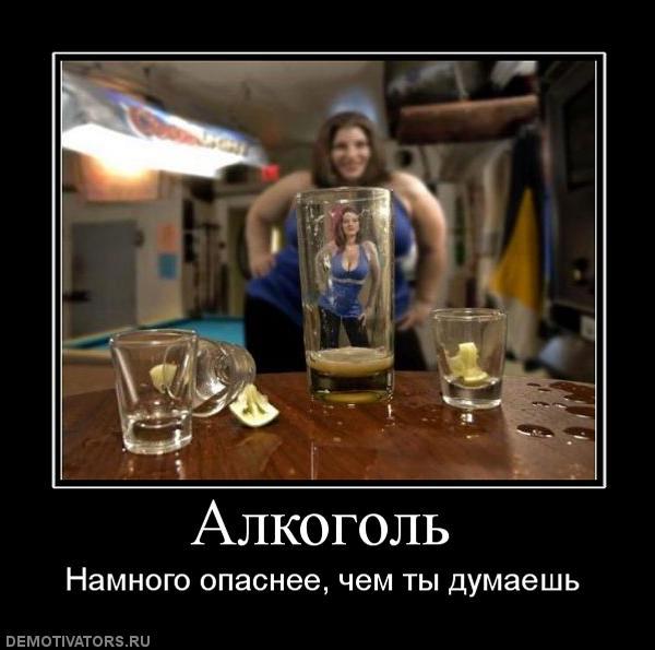 Смешные демотиваторы про алкоголь - смотреть бесплатно, 2017 7