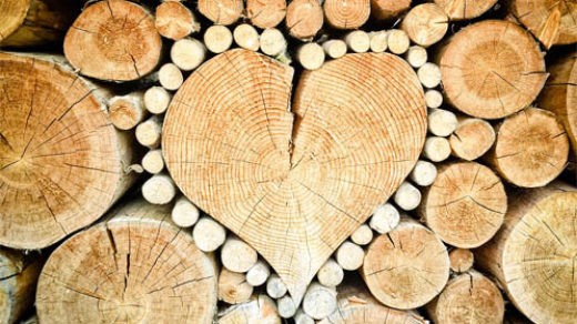 Как защитить древесину от гниения, влаги, разрушения - рекомендации 1