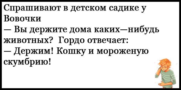 Смешные анекдоты про Вовочку - новые, свежие, ржачные, 2017 5