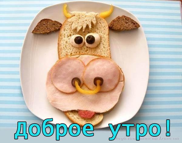 Смешные картинки С добрым утром - веселые, забавные, смотреть 2