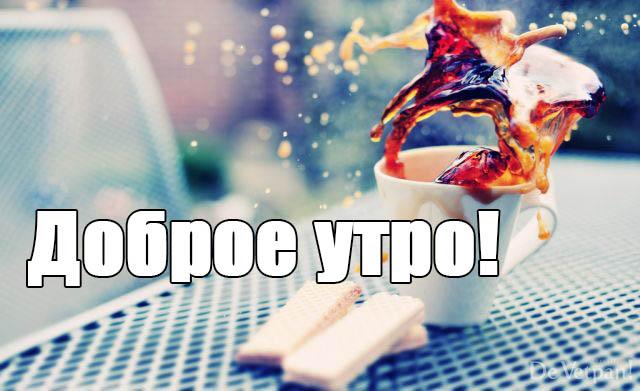 Смешные картинки С добрым утром - веселые, забавные, смотреть 9