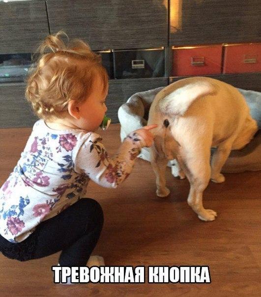 Смешные картинки про детей - прикольные, веселые, забавные 4