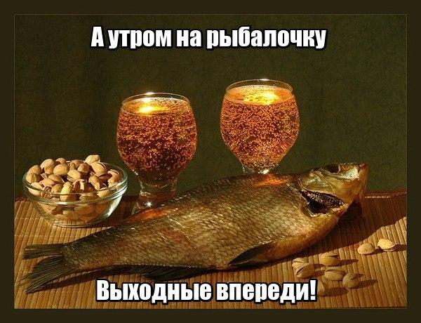 Смешные картинки про рыбалку - прикольные, ржачные, веселые 1