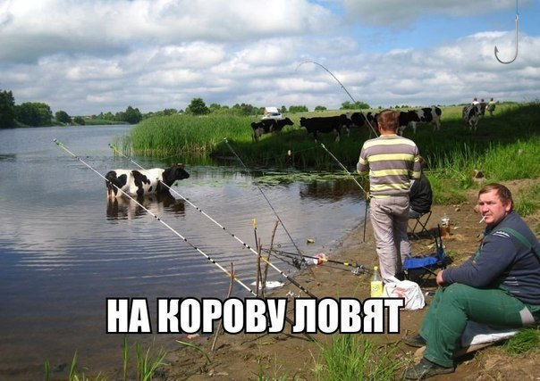 Смешные картинки про рыбалку - прикольные, ржачные, веселые 13
