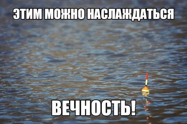 Смешные картинки про рыбалку - прикольные, ржачные, веселые 4