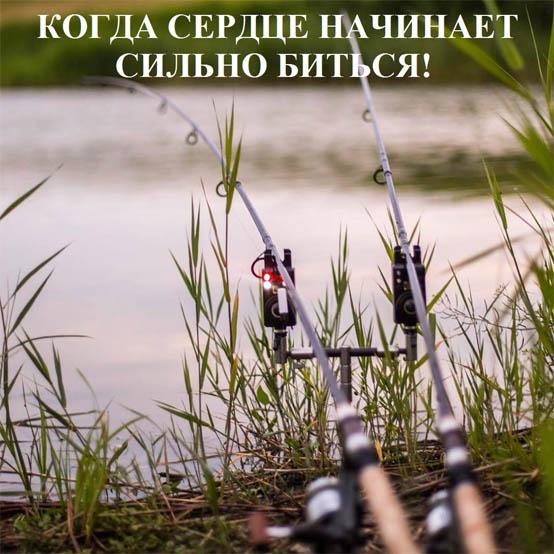 Смешные картинки про рыбалку - прикольные, ржачные, веселые 6