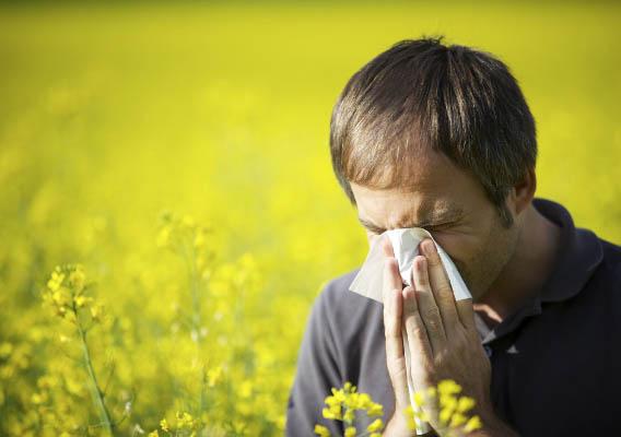 Аллергический ринит - симптомы и лечение, виды заболевания 4