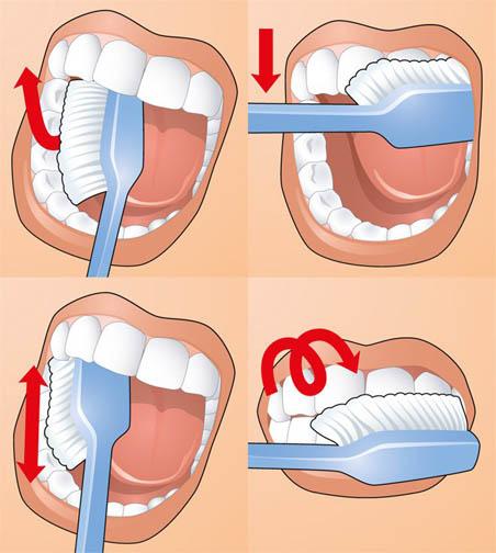 Как чистить зубы ребенку в год - эффективные рекомендации и советы 3