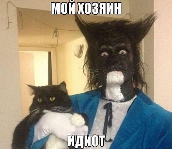 Подборка смешных и прикольных картинок - веселые, с надписями, 2017 3