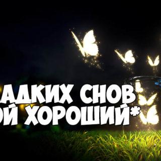 Ильф и Петров  Золотой теленок