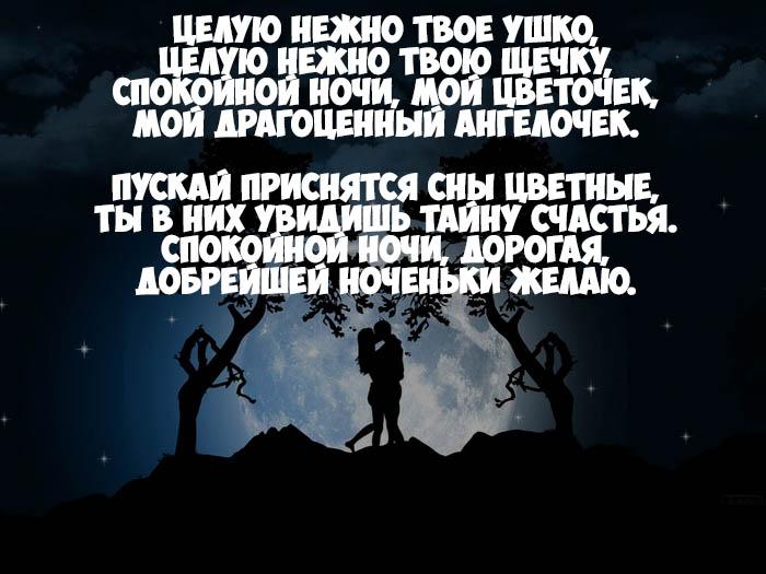 стих знакомой девушке спокойной ночи
